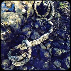 Mull-rope-on-rock