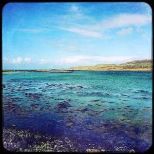 Mull-sea