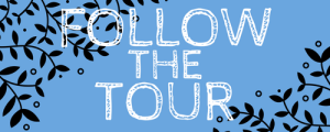TMT-followthetour