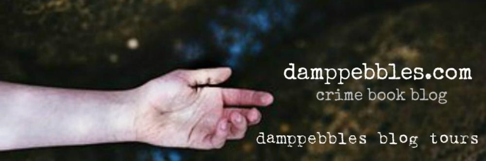 damppebbles blog tours