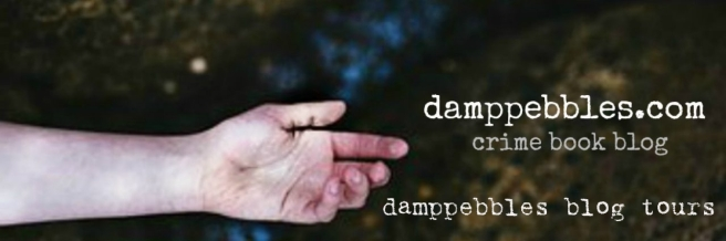 damppebbles blog tours