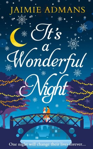 It's a Wonderful Night-large