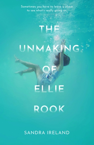 Unmaking of Ellie Rook